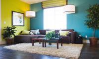 Peinture murale et plafond pour salon et pièce à vivre